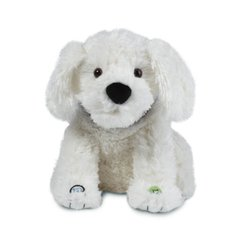 Smarty Ants Phonics Reading Pup White