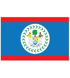 Allied Flag 5x 8-ft Nylon Belize United Nation Outdoor Flag - Blue/Red