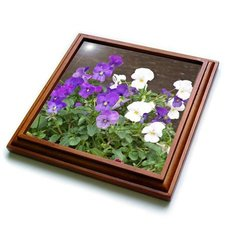 "3dRose trv_19176_1 Violets Trivet with Ceramic Tile, 8 by 8"", Brown"