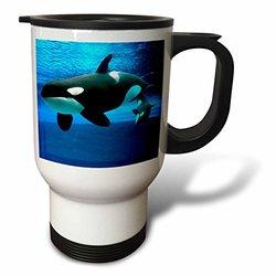 3dRose Killer Whales Travel Mug, 14-Ounce
