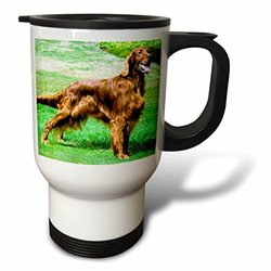 3dRose Stainless Steel 14-Ounce Irish Setter Travel Mug