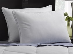 Firm Exquisite Hotel Down-Like Gel Pillows - Size: King - Pack of 2