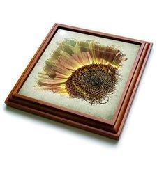 "3dRose trv_42626_1 Peach Summer Sunflower Framed-Flowers-Photography Trivet with Ceramic Tile, 8 by 8"", Brown"