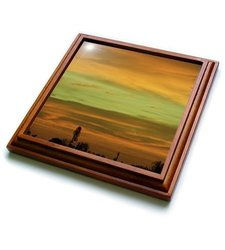 3dRose Bronze Heavens, Trivet with Ceramic Tile, 8 by 8-inch