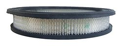 ACDelco A112C Professional Air Filter