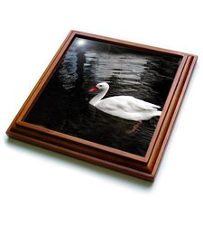 "3dRose trv_1015_1 White Duck Trivet with Ceramic Tile, 8 by 8"", Brown"