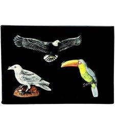 Sax 1463512 New Bird Spring Mold - (Air Dried Clay)