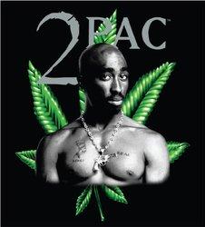 JP Imports Tupac Leaf Blanket - Black/Green - Size: King