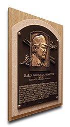 MLB Umpire Doug Harvey Baseball Hall of Fame Plaque on Canvas, Medium, Brown