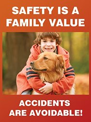 """Accuform Signs PST164 Safety Awareness Poster, """"SAFETY IS A FAMILY VALUE - ACCIDENTS ARE AVOIDABLE!"""", 24"""" Length x 18"""" Width, Laminated Flexible Plastic"""
