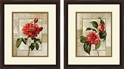 PTM Images 1-20836A 1-Unit Red Roses Frame, 14 by 16-Inch, Espresso, Set of 2