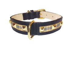 Poochberry Tapered Dog Collar in Black with Checkered Trim - Size: XL