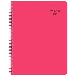 2016 Whoopsie Daisy Professional Weekly/Monthly Planner (155-905_16)