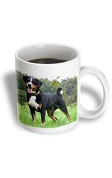 3dRose 11-ounce Appenzeller Ceramic Mug - Mountain Dog
