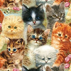 A Pile of Kittens a Piece Jigsaw Puzzle by Sunsout Inc 1000
