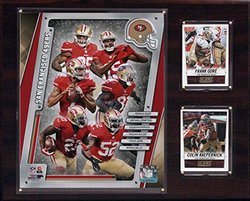 NFL San Francisco 49ers 2014 Team Plaque, 12 x 15-Inch
