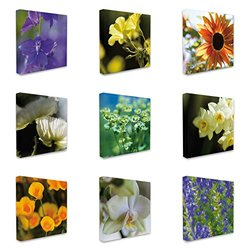 Stupell Industries Piece Flower Photographic Print on Wrapped Canvas Set 9