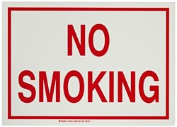 "Brady 10""x14"" Polyester No Smoking Glow-In-The-Dark Fire And Exit Sign"