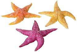 Aqua Della Real Sea Star Mixed in Display Decoration Ornament Set