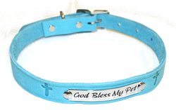 "Auburn Leather 1"" x 24"" Pet Ark Survivor Series Collar - Aqua"
