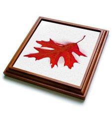 """3dRose trv_36766_1 Floating Red Leaf Trivet with Ceramic Tile, 8 by 8"""", Brown"""