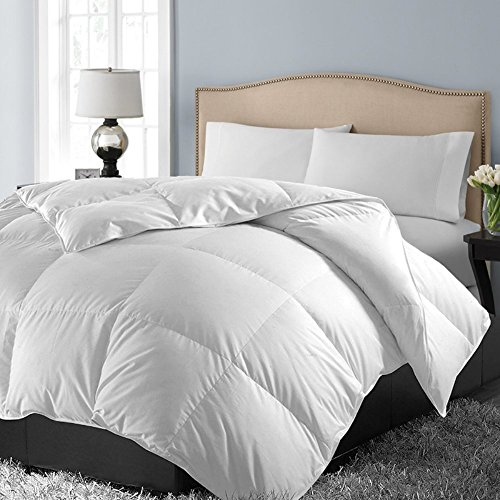 1 000 Thread Count Egyptian Cotton Oversized Comforter Full Queen