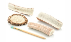 Usa Elk Antler Healthy Natural Chews Variety Pack