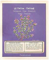 Esschert Design Seed Packet, Thyme