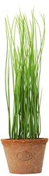 Esschert Design Artificial Herb Plant - Chives - Size: Small