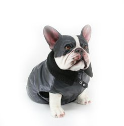 Dogit Faux Leather Bomber Dog Jacket, Medium, Charcoal