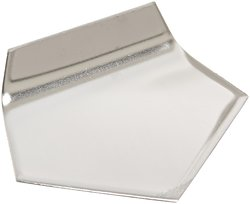 Mettler Toledo Stainless Steel Class 1 Sheet in Plastic with Calibration