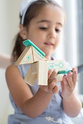 Tegu 8-Pieces Robo Magnetic Wooden Block Set