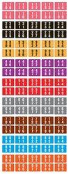 Acme Compatible Double Digit Permanent Color Code Label Numeric 5000 PCs