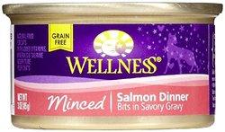 Wellpet Minced Salmon Dinner Pack of 24 - 3Oz