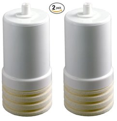 AP217 Replacement Cartridge for Drinking Water System Filters - 2 Pack