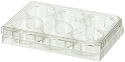 BD Falcon Translucent High Density Sterile Cell Culture Insert