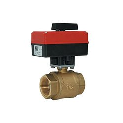 Red-White Valve 1RW5910 110V Actuated Ball Valve