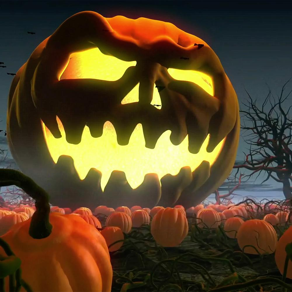 "windowfx 2"" halloween 6 videos classics collection usb - check back"