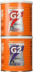 Gatorade G2 Combo Grape/Fruit Punch Powder Mix - 2 Pack - 19.6 oz