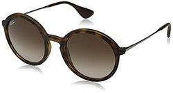 Ray-Ban Sunglasses: 0rb4222-865-13-dark Rubber Havana Frame