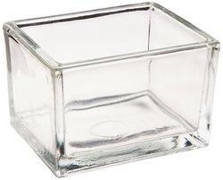 Thermo Scientific Richard Allan Scientific Glass Staining Dish
