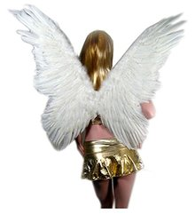 Sacasusa Super Large Butterfly Feather With HALO - White