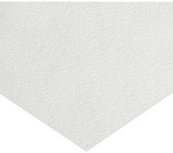 Whatman 1822-849 Glass Microfiber Binder Free Filter Sheet Pack of 50