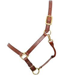 Walsh British Leather Halter - Size: 8