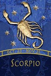 """Toland Home Garden Zodiac-Scorpio Decorative USA-Produced House Flag, 28 by 40"""""""
