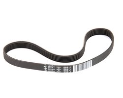Electrolux Genuine OEM Replacement Belt (ELX033106)