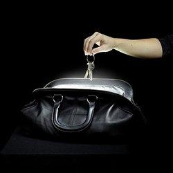 Brainstream SOI Handbag/Purse Light with Automatic Sensor