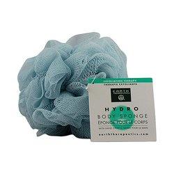 Echinacea Immune Support Tea, 16 Bg ( Multi-pack)