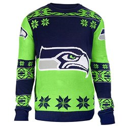 NFL Big Logo Sweater: Seattle Seahawks/xl