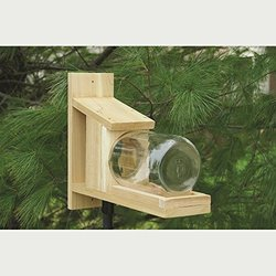 Songbird Essentials Squirrel Jar Feeder (Set of 1)